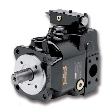 PAKER YB1-25/25 Piston Pump